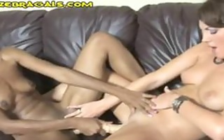 ir beauties double marital-device action