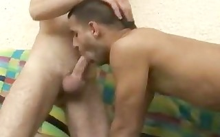 homosexual felching and a-hole licking