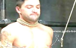 hot homo boyz made to engulf then receive spanked