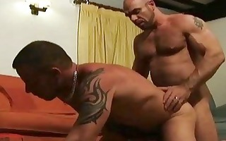 aged bearded homo hunks having incredible sex