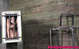 breasty bdsm bondman darling teat tortured