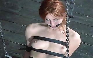 torturing beautys fuck holes
