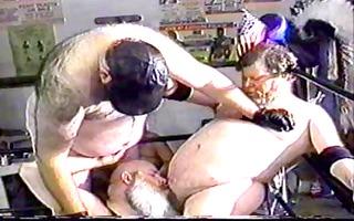 large bear wrestling