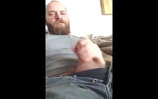 bear cums in bear