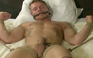 horny homosexual fellows in light servitude