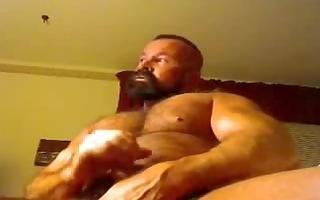 built dad bear on cam./
